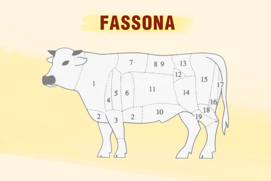 Che cos'è la Fassona?